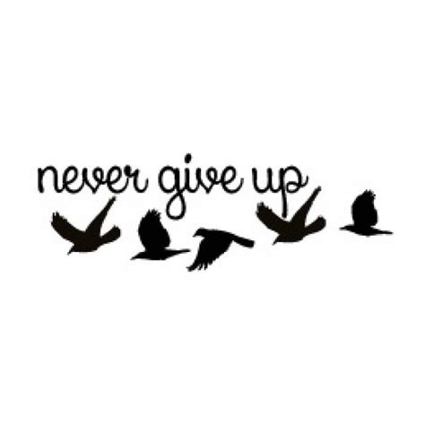 never give up tattoo designs 25 best ideas about never give up on