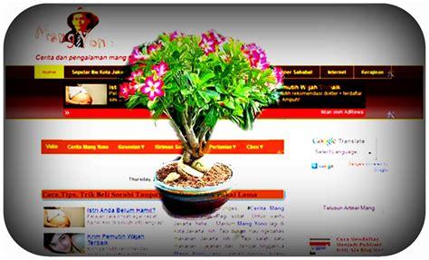 Biji Bunga Kamboja Jepang cara melukis bunga kamboja www imgkid the image