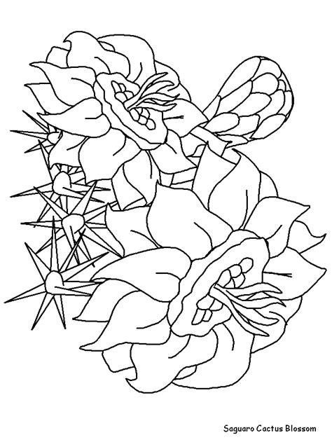 saguaro cactus coloring page az coloring pages