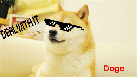Doge Meme Wallpaper - doge meme wallpaper 85 images