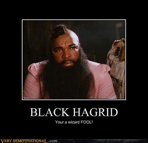 Hagrid Meme - hagrid harry potter quotes quotesgram