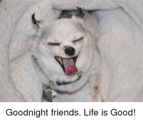 Life Is Good Meme - goodnight friends life is good friends meme on sizzle