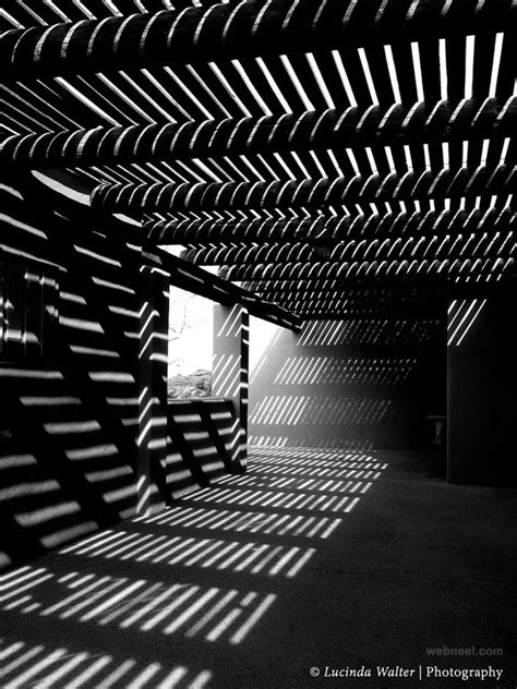 Shadows And Light by 40 Best Black And White Photography Exles From Top