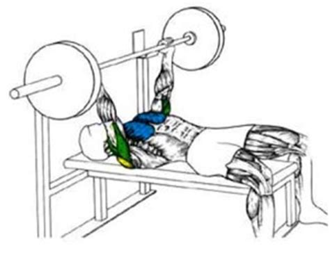 Shoulder Pain While Bench Pressing 171 Injured Shoulder