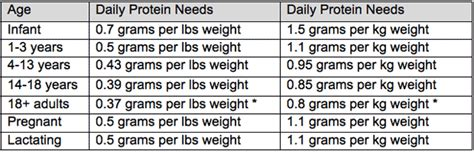 protein needs calculator protein intake chart how to build lean muscular