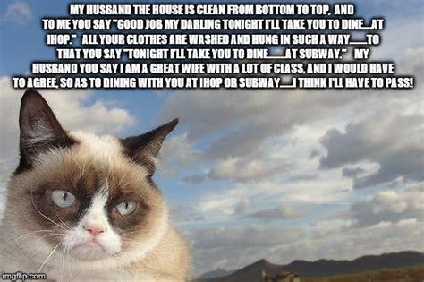 Grumpy Cat Meme Clean - grumpy cat sky memes imgflip