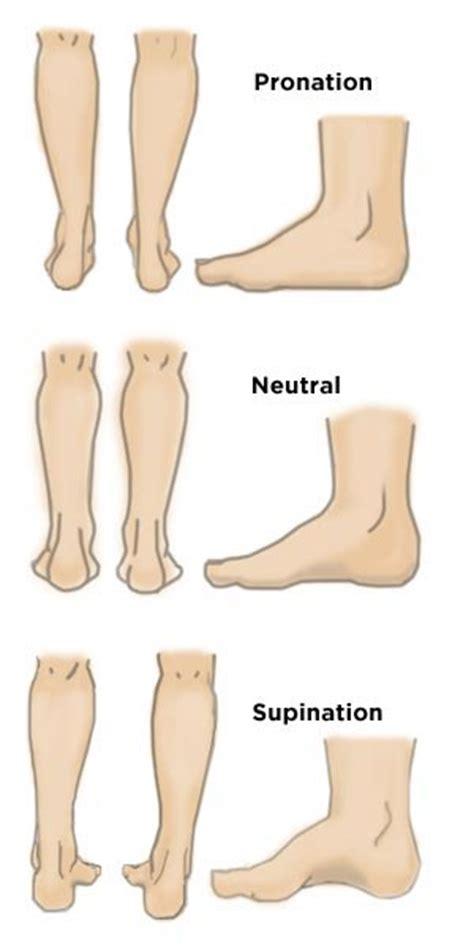 Similiar Foot Pronation Vs Supination Keywords