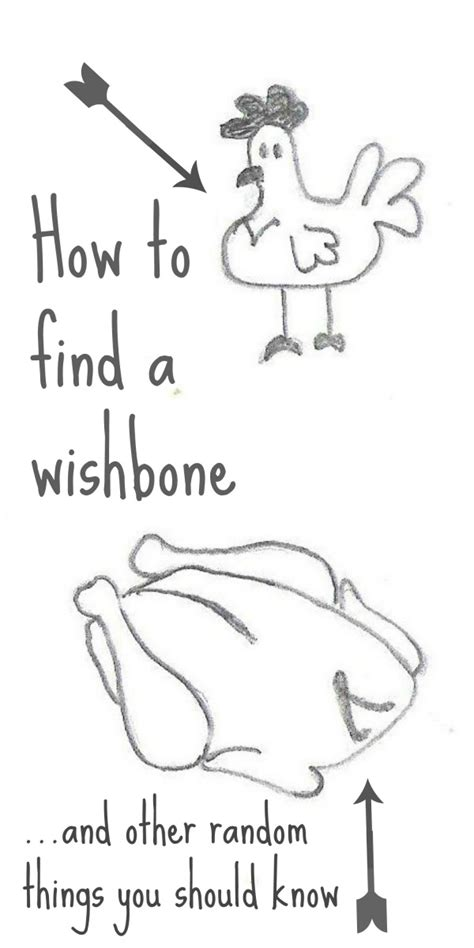 How To Find Random On Wish On A Wishbone Nature For