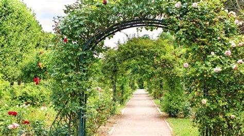 Rosenbogen Garten by Rosenbogen Im Garten Aufstellen Tipps