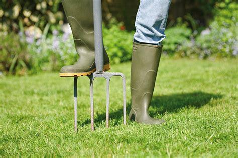 winter lawn care winter lawn care winter lawn maintenance quiet corner