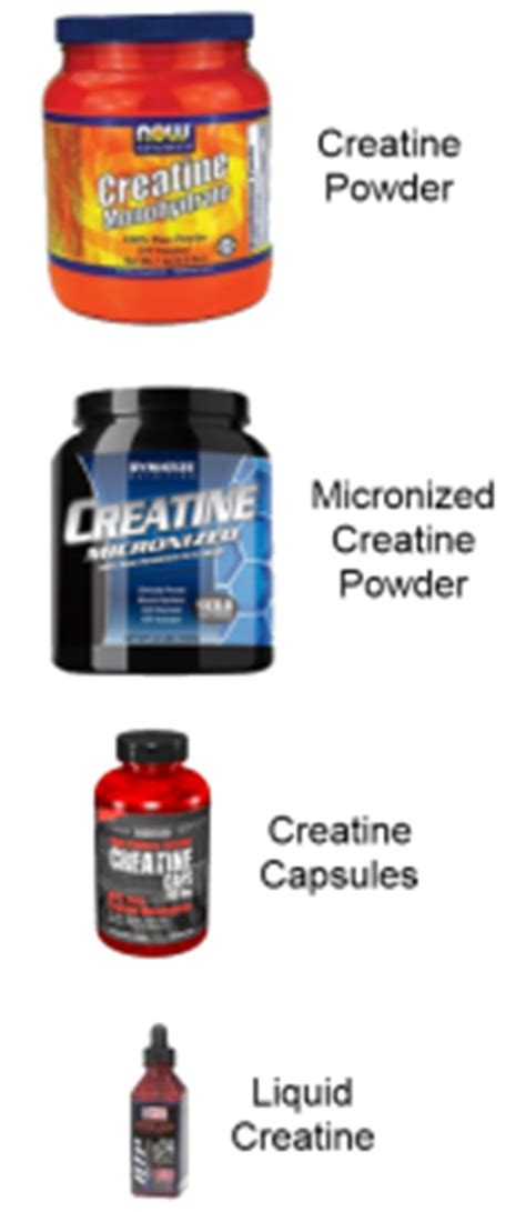 creatine vs no creatine the best creatine supplement a guide to buying creatine