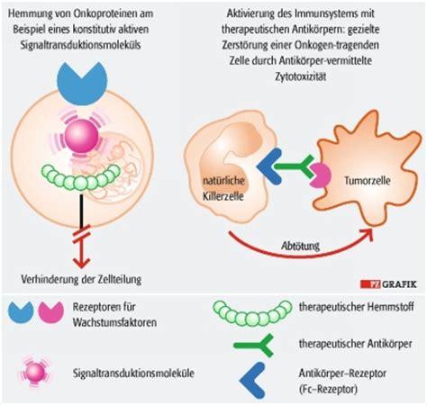 protein z mangel pharmazeutische zeitung molekularbiologie wie