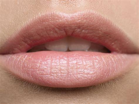 lip color lip color and fresh makeup