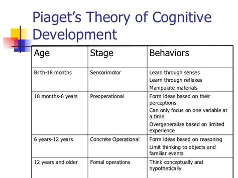 Child Development In Preschool Essay by 7 Best Cognitive Development Images On Early