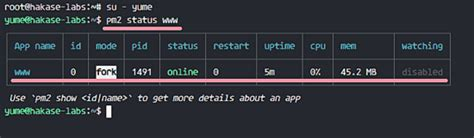 node js nginx tutorial how to deploy node js applications with pm2 and nginx on