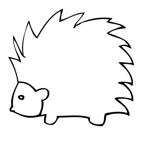 how to draw porcupine