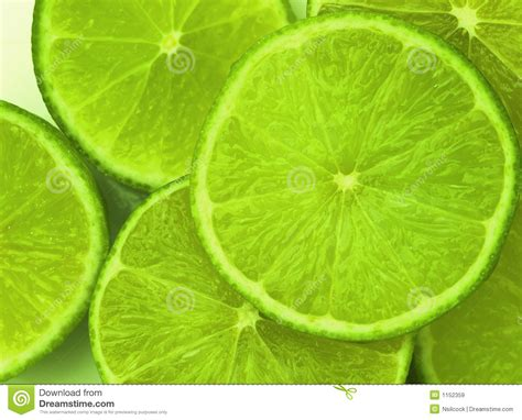 imagenes de limones verdes limones verdes im 225 genes de archivo libres de regal 237 as
