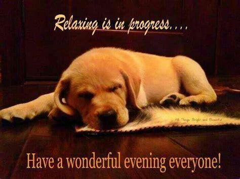 Bildergebnis für a wonderful evening