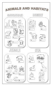 Habitats Worksheets 2nd Grade by Worksheets For All And Worksheets Free