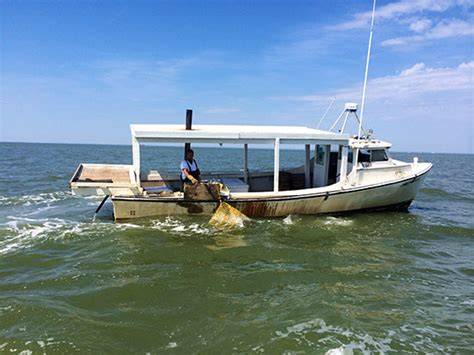 crabbing boats for sale in maryland ten boats of the chesapeake bay chesapeake bay program