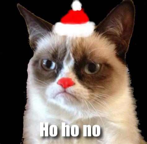 Cat Internet Meme - image holiday grumpy cat internet meme jpg the amazing