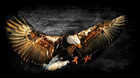 craft work wallpaper free download bald eagle work of art wallpaper allwallpaper in 7424
