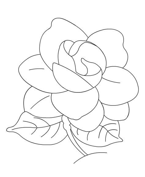 Gardenia Color Gardenia Coloring Gardenia Coloring