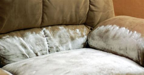 how to clean vomit off couch someone vomit all over your couch and after cleaning it up