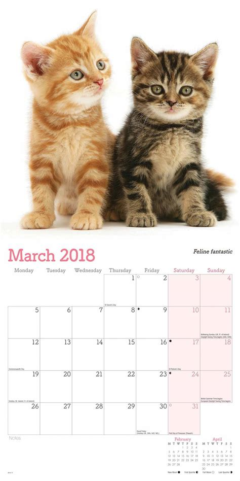 printable kitten calendar cute cats calendar 2018 calendar club uk