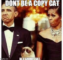 Copy Cat Meme - image tagged in funny memes grumpy cat obama imgflip