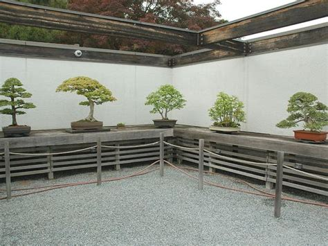 bonsai display bench display bonsai and benches on pinterest