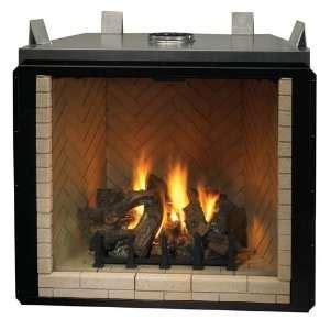 Fireplace Assembly by Heat N Glo Heatilator Direct Vent Fireplace Gas