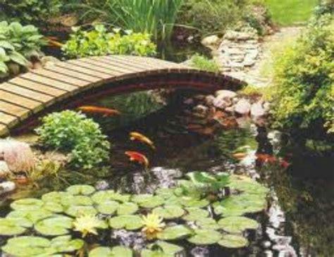 koi pond bridge koi pond with bridge ponds pinterest