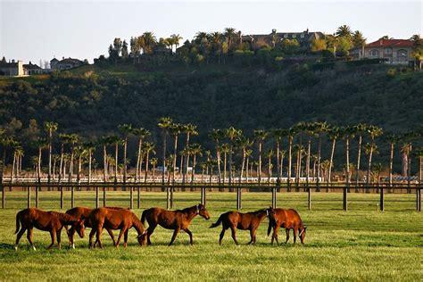 farmhouse ranch the happy ranch horse farm asia travel agencies