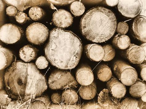 Holz Vor Der Hütte Bilder by Holz Vor Der H 252 Tte Piqs De Bilddatenbank Bilder