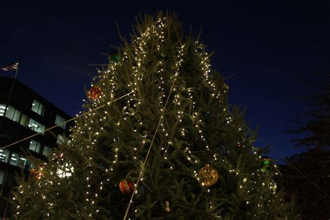 christmas tree lighting speech sles santa claus help light dupont tree borderstan