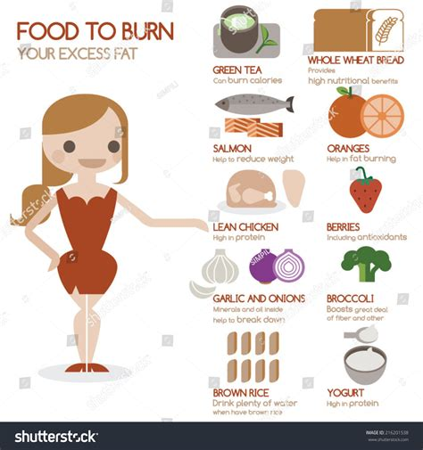 Out With The Excess Weight by Food To Burn Your Excess Stock Vector Illustration