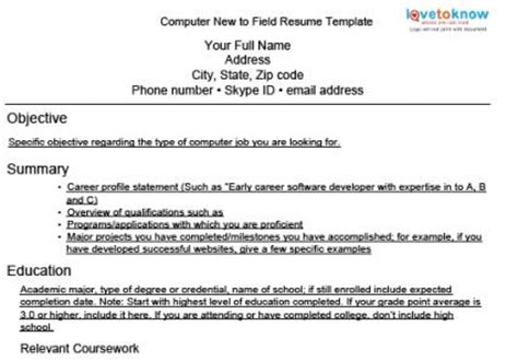 expert resumes for computer and web