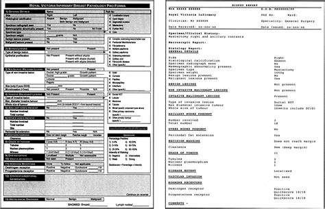 Histology Report Template
