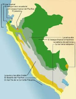 preguntas de geografia del peru geografia en accion ecorregiones