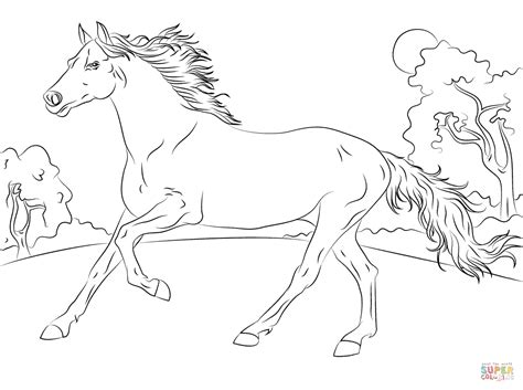 running arabian horse coloring page free printable