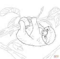 cute sloth coloring pages coloring pages