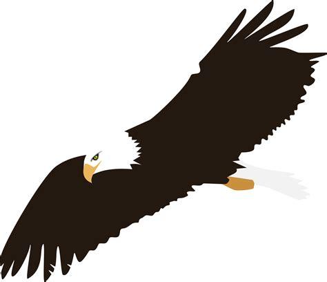 eagle clipart soaring bald eagle vector clipart image free stock photo