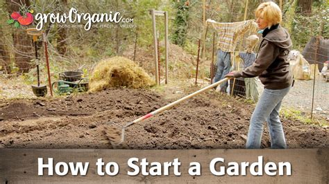 how to start a backyard garden how to start a small garden in your backyard 28 images
