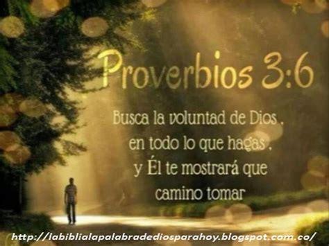 23 proverbios y versos bblicos para el da del padre la biblia la palabra de dios para hoy proverbios b 237 blicos