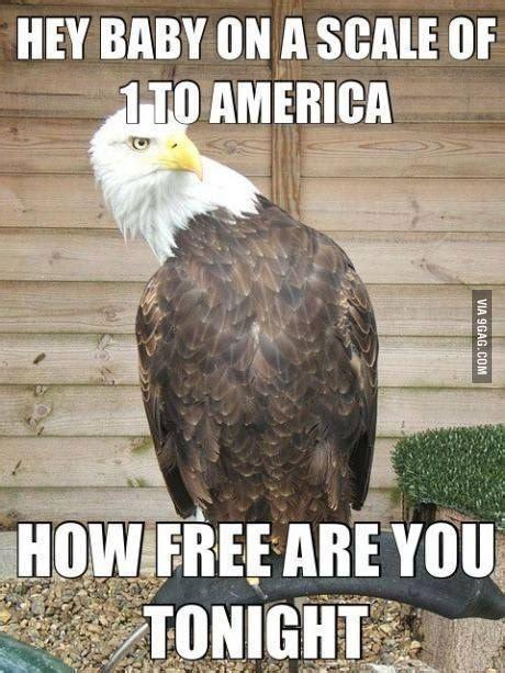 Funny Patriotic Memes - 21 murica memes to keep your patriotism flowing