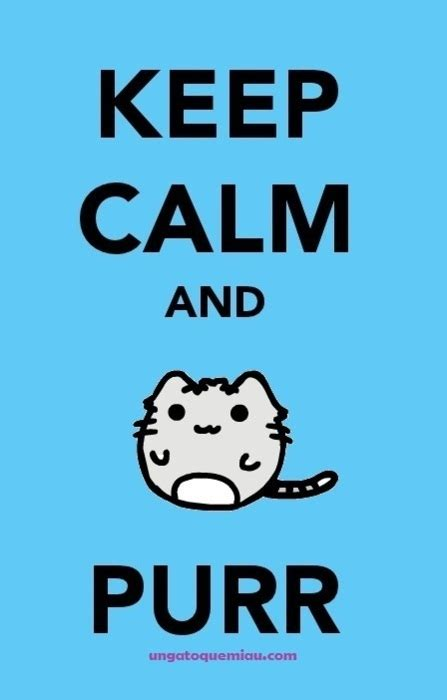 cat keep calm keep calm and meow purr image 424242