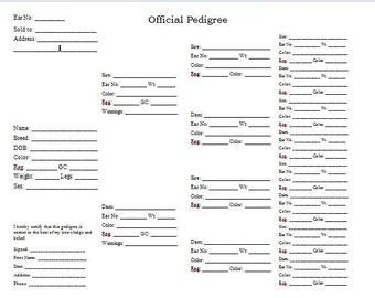 Rabbitry Etsy Free Rabbit Pedigree Template