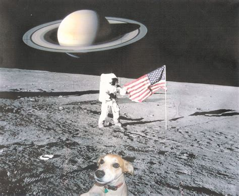 puppies in space the chronicles dogs in space and history et al send me your photo shop pics