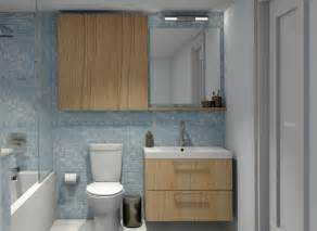 Ikea Kitchen Cabinets For Bathroom Bathroom Foxy Small Blue Bathroom Decoration Using Mirror